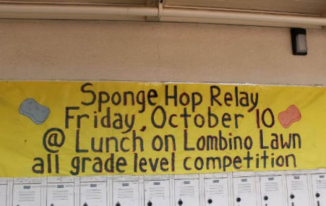 First Sponge Hop relay of the new year!