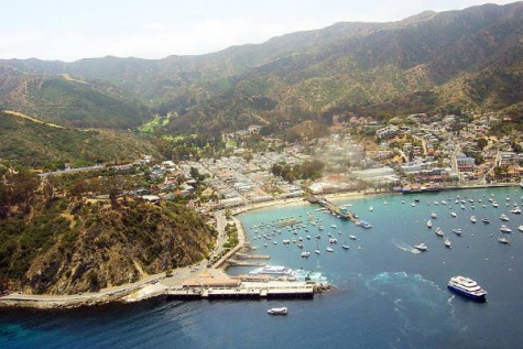 Take a Trip to Catalina!