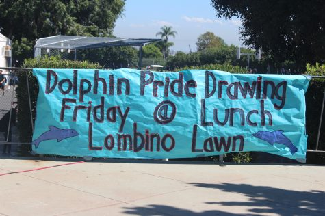 September Dolphin Pride!