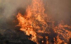 Southern California Wildfire